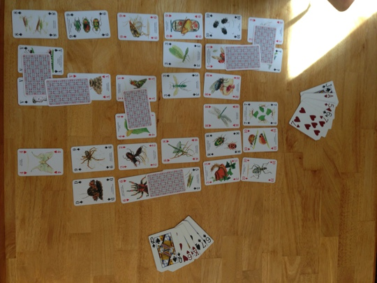 Playing cards on a table arranged in a 6 by 6 grid. Some cards are face down and bridging other cards. Hands of cards are to the side.